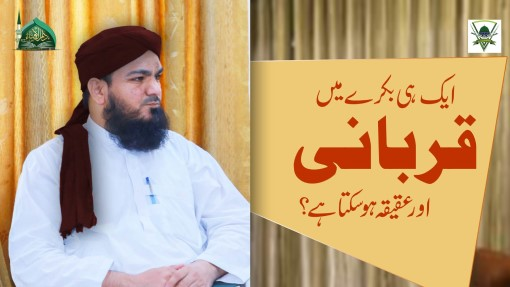 Aik Hi Bakray Main Qurbani Aur Aqiqah Dono Ho Saktay Hain?