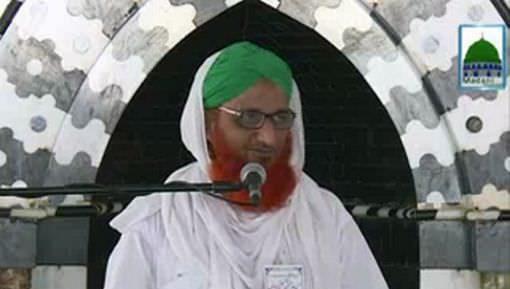 Iman Ki Shakhain Ep 245 - Bachon Par Shafqat Aur Muhabbat