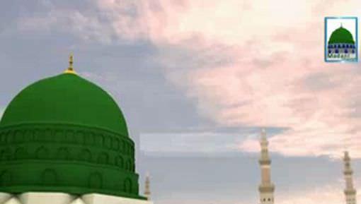 Shan e Ali رضی اللہ عنہ Bazaban e Mustafa ﷺ