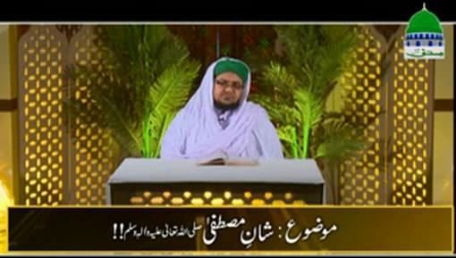 Shan e Mustafa ﷺ