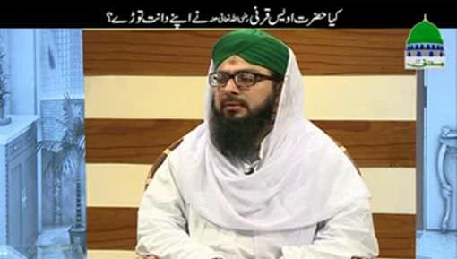 Kia Hazrat Owais Qarani رضی اللہ عنہ Nay Apnay Dant Toor Diye Thay?