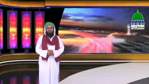 Madani News English - 03 February 2017