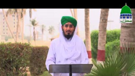 Hukumat Rasoolullah ﷺ Ki Ep 09 - Hazrat Khuzaima رضی اللہ تعالٰی عنہ Ki Gawahi Aur Ikhtiyarat e Mustafa ﷺ