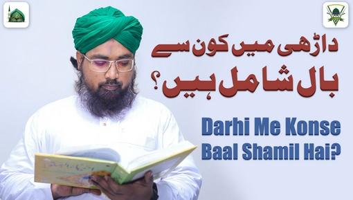 Darhi Main Kon Say Baal Shamil Hain?