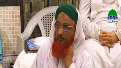 Nigran e Pak Kabina Aur Arakeen e Shura Aur Majls e Madrasa tul Madina Faisalabad