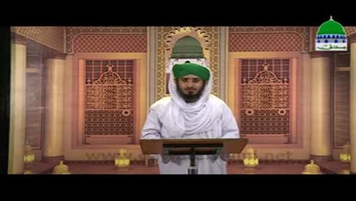 Hukumat Rasoolullah ﷺ Ki Ep 15 - Azmat e Mustafa ﷺ Bazaban e Shajar o Hajar
