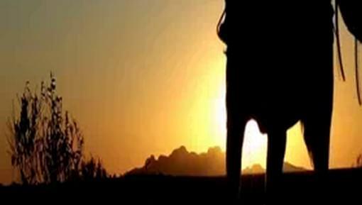 سفر إمام أحمد رضا خان رحمه الله تعالى إلى بلاد الحجاز