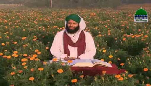 Ajaib ul Quran Ep 23