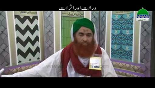 Darakht Aur Asrat