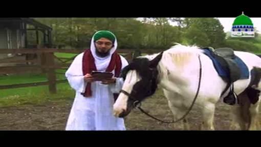 Ghoron Kay Baray Main Aaqa ﷺ Ka Farman