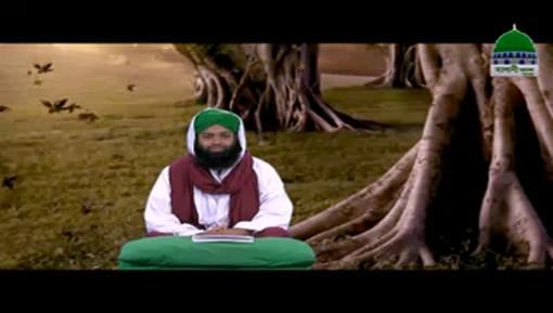 Batini Amraz Ep 28 - Hat Dharmi Ki Bina Par Haq Ki Mukhalifat