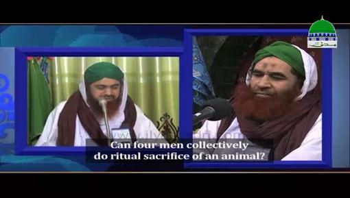 Can Four Men Collectively Do Ritual Sacrifice Of Animal