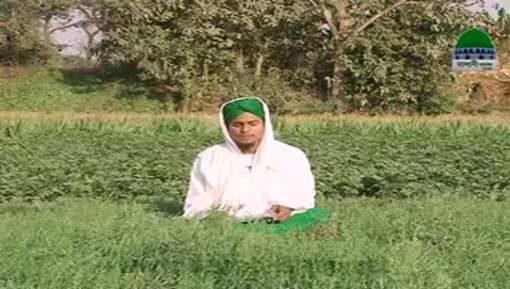 Sunnatain Aur Aadaab Ep 20 - Qarz Denay Kay Fazail