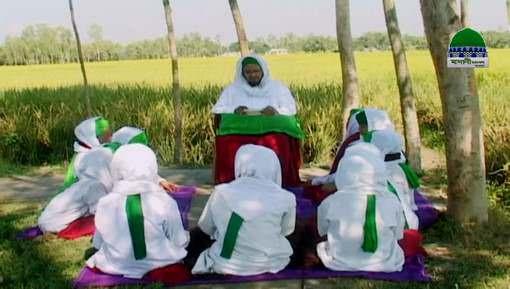 Seekhnay Wali Kahaniyan Ep 23 - Hazrat Imam e Azam رحمہ اللہ تعالٰی Ka Hafza