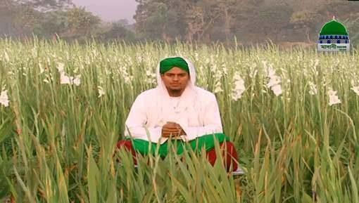 Sunnatain Aur Aadaab Ep 08 - Jummay Ki Sunnatain Aur Adaab - Bangla