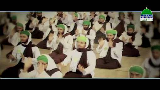 Documentary - Khususi Islami Bhai