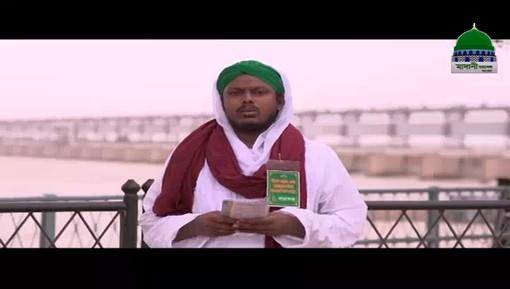 Qurbani Kay Janwar Jannati Ghoray