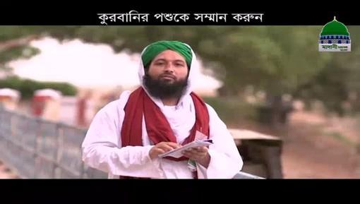 Qurbani Kay Janwaron Ki Tazeem Karain