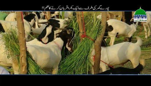 Ghar Walon Ki Taraf Say Aik Bakra Qurban Karnay Ka Hukm