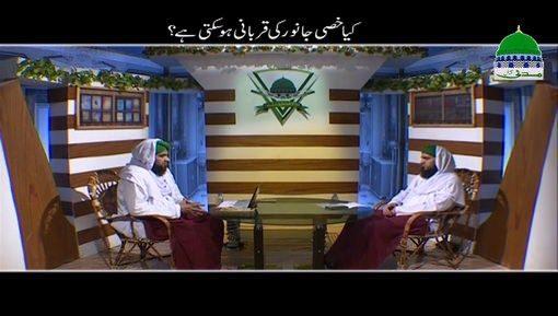 Kia Khassi Janwar Ki Qurbani Ho Sakti Hai?