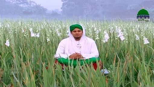 Sunnatain Aur Aadab Ep 25 - Eidain Ki Sunnatain Aur Aadab - Bangla