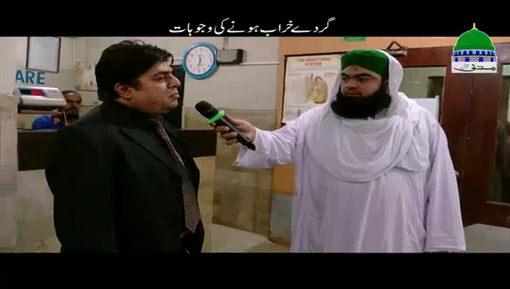 Gurday Kharab Honay Ki Wujoohat