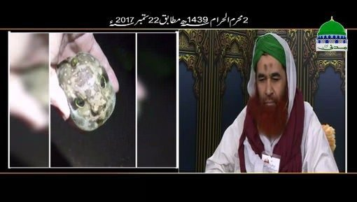 Ajeeb o Ghareeb Janwar