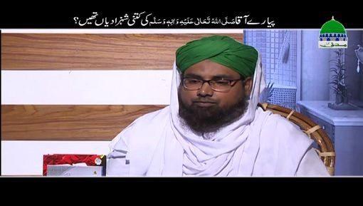 Pyaray Aaqaﷺ Ki Kitni Shehzadiyan Thin?