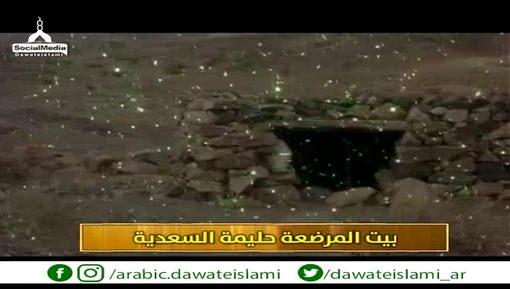 قصة المرضعة مع النبي ﷺ - برنامج صور من سيرة الحبيب ﷺ