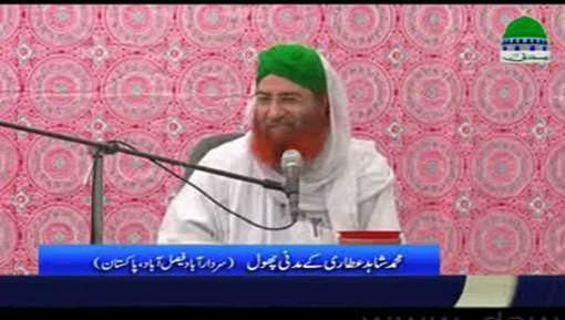 حاجی شاہد عطاری کے مدنی پھول