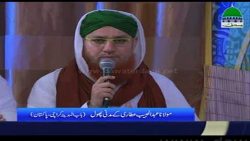 مولانا عبدالحبیب عطاری کے مدنی پھول
