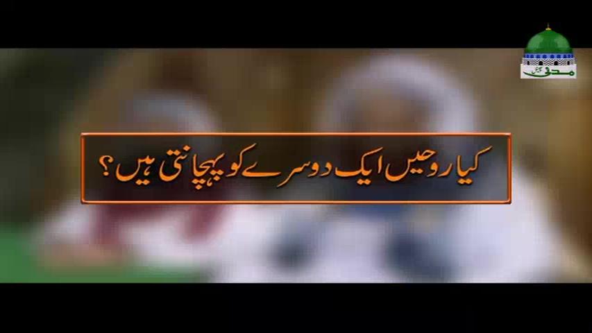 Kia Rohain Aik Doosray Ko Pehchanti Hain?