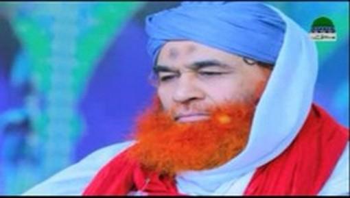 حضرت مولانا مفتی نسیم مسباحی صاحب کا امیرِ اہلسنت دامت برکاتہم العالیہ کے پیغام کا جواب