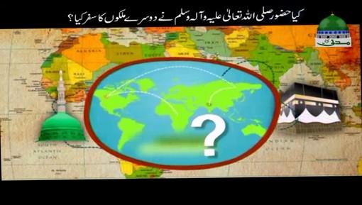 کیا حضور صلی اللہ علیہ وسلم نے دوسرے ملکوں کا سفر کیا؟