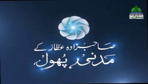 Media library - Dawat-e-islami,watch listen & download islamic videos