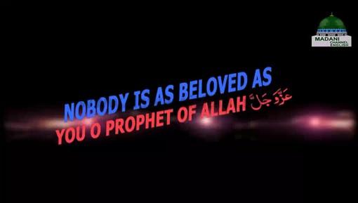 Nobody Is Favourite Beside The Beloved Prophet صلی اللہ تعالیٰ علیہ وآلہ وسلم