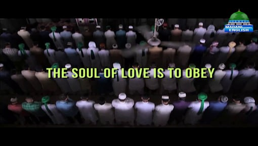 The Soul Of Love Is To Obey