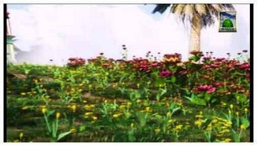 Faizan e Fatawa Razaviyya(Ep:08) - Kitab-ul-Ijara Volume 19