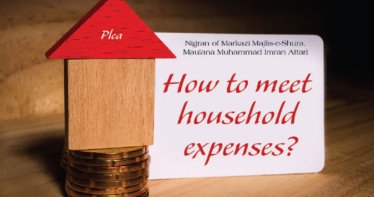 How to meet household expenses?