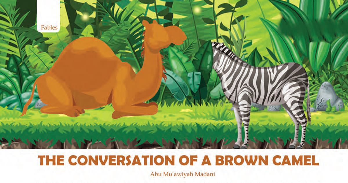 The conversation of a brown camel