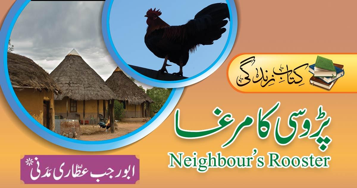 پڑوسی کا مرغا