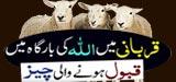 Qurbani Me Allah Ki Bargah Me Qabool Hony Wali Cheez