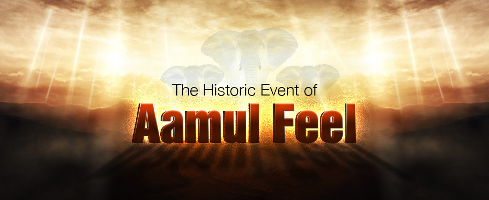 The Historic Event of Aamul Feel
