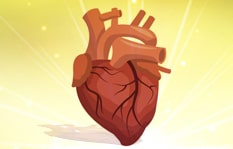 Importance of the Purity of Heart